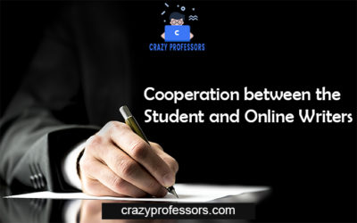Cooperation between the Student and Online Writers